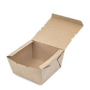 Cartón / Papel Bagazo de Caña